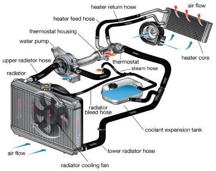 Car Cooling System >> Automotive Cooling System Quality Car Care Inc Ocoee Fl