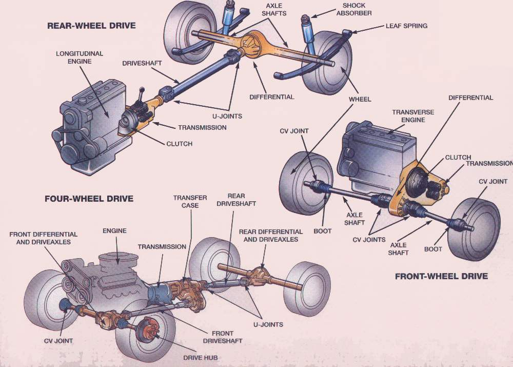 cv axle repair quality car care inc ocoee fl rh qualitycarcareocoee com car rear axle diagram Wheel and Axle Diagram